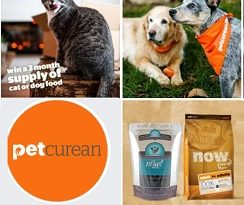 Petcurean Sweepstakes Dog & Cat Food Giveaways