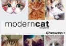 Modern Cat Giveaways: Win Monthly Prize Packs ( Fresh Element Pet feeder)