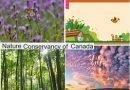 Nature Conservancy Canada Quiz & Win Destinations Summer Prizes Contest