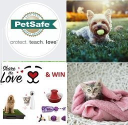 Petsafe Canada Advent Calendar Contest: Win Dog & Cat Prizes