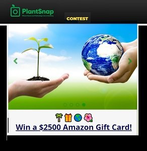 www.plantsnap.com/contest.PlantSnap Contest Canada & US.Enter the  PlantSnap Smell the Flowers, thank the trees, watch hope bloom! Giveaway to win a Amazon gift card
